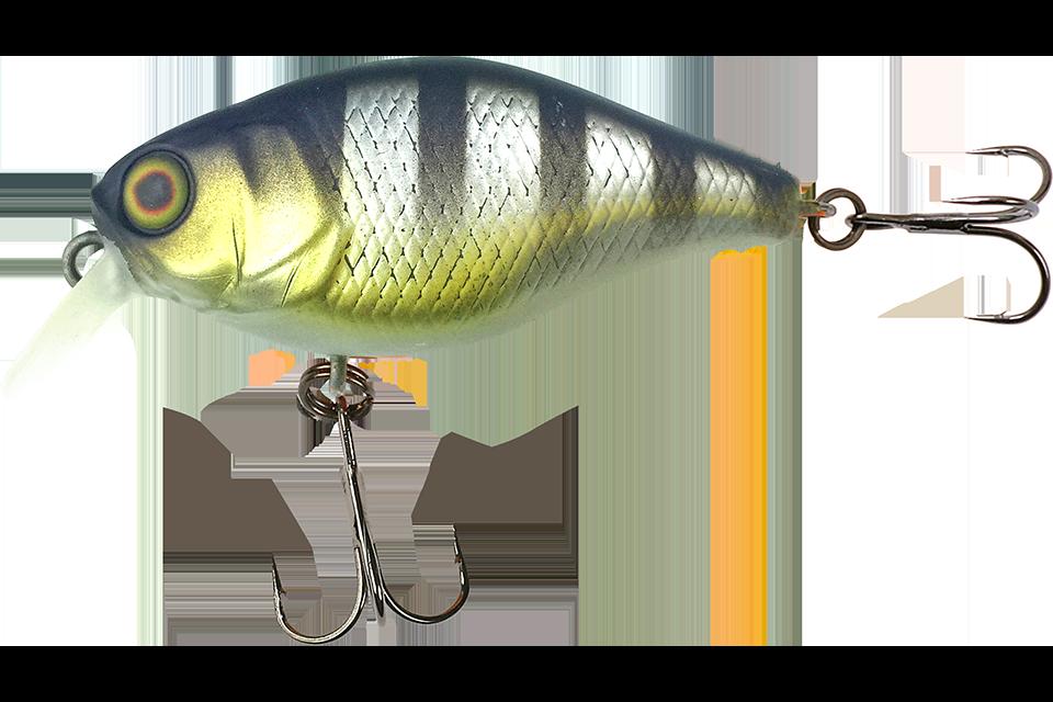 shibu silver gill