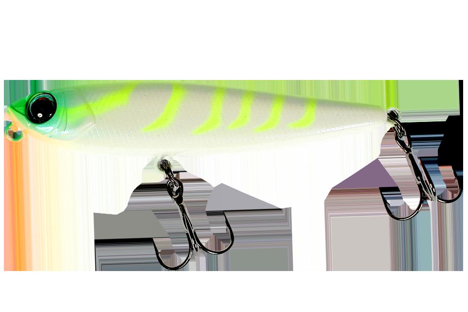 chart back shrimp